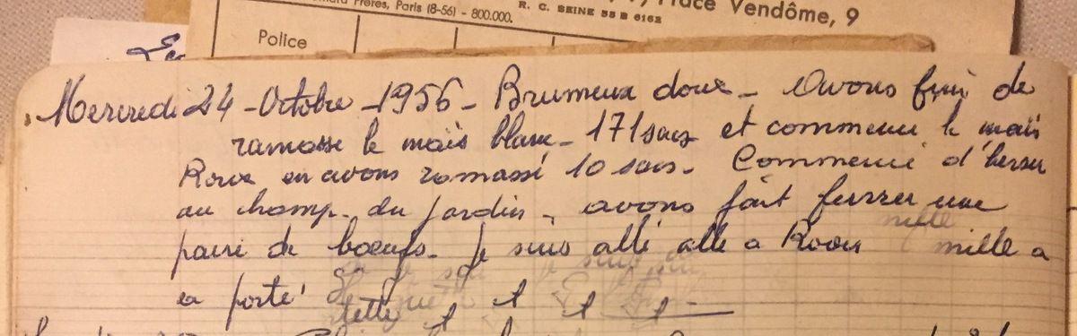 Mercredi 24 octobre 1956 - Maïs blanc/maïs roux