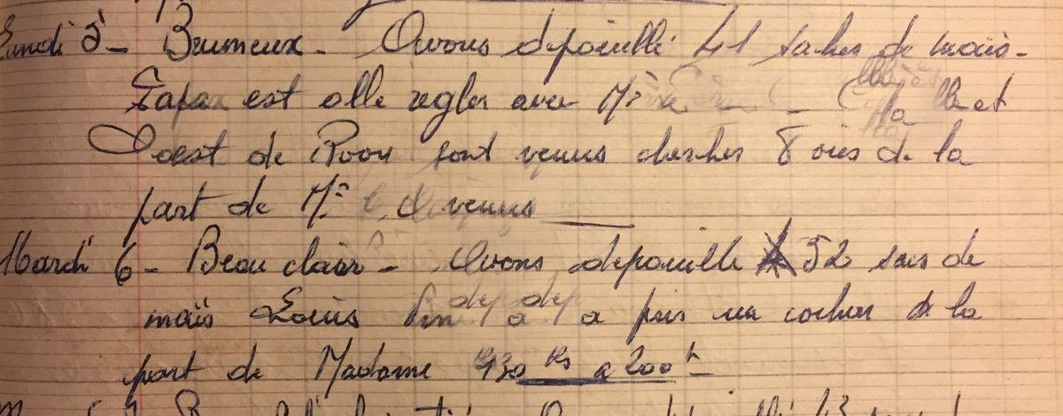 Lundi 5 et mardi 6 novembre 1956 - Dépouiller le maïs