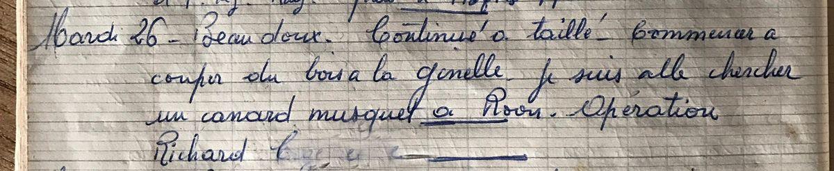 Mardi 26 février 1957 - un canard musquet