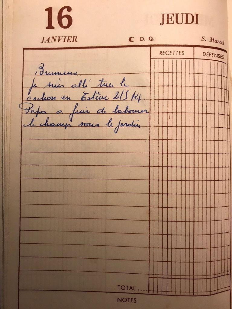 Jeudi 16 janvier 1958 - La saison du cochon