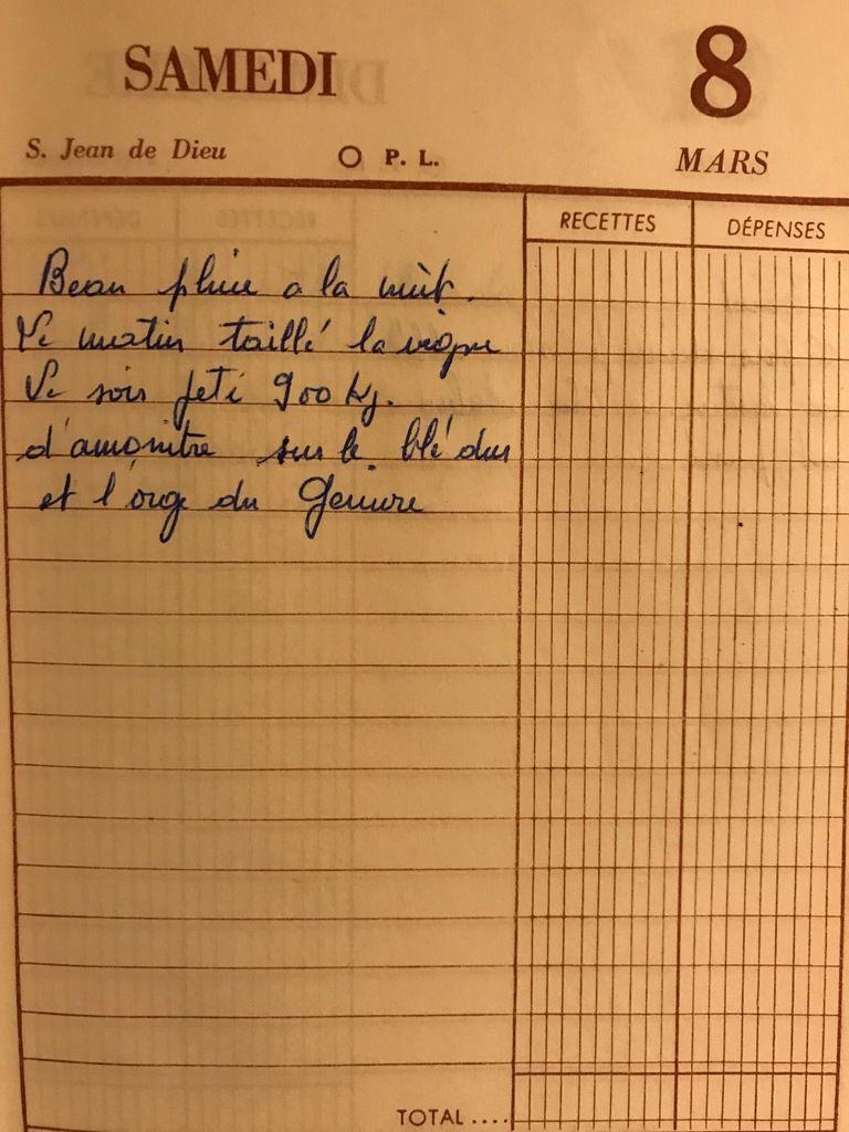 Samedi 8 mars 1958 - Tailler la vigne