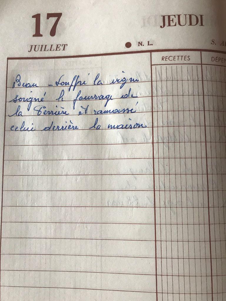 jeudi 17 juillet 1958 - du soufre pour la vigne