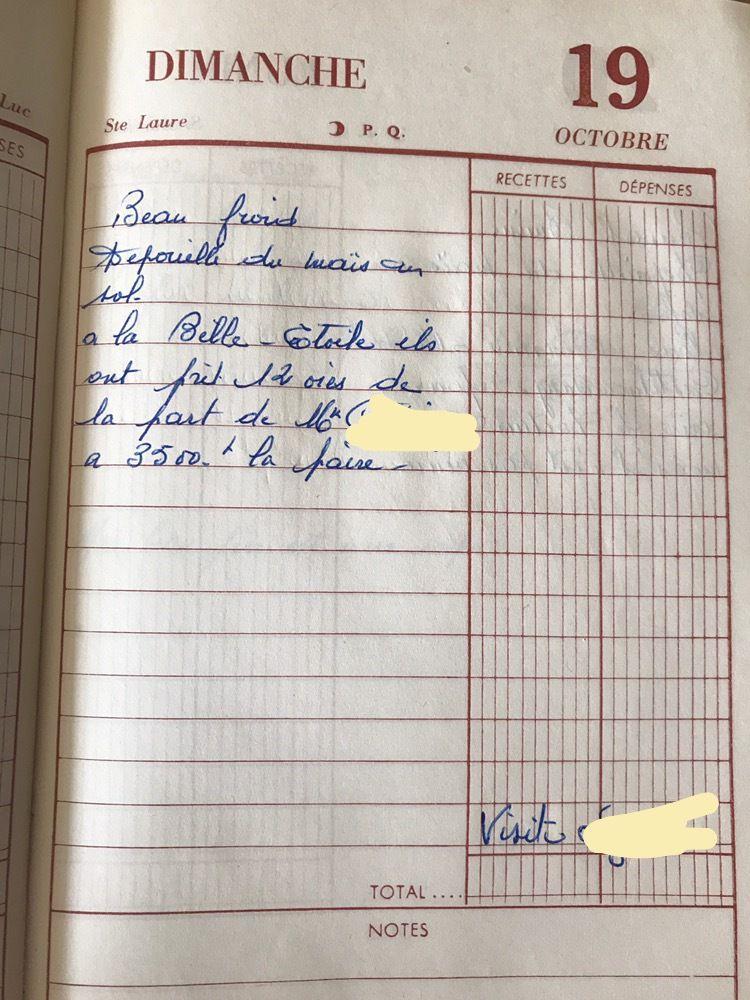 Dimanche 19 octobre 1958 - Les oies à la Belle Etoile