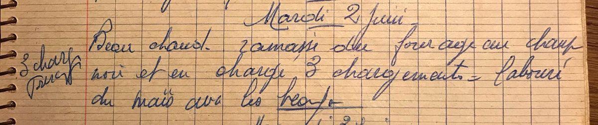Mardi 2 juin 1959- labourer avec les bœufs