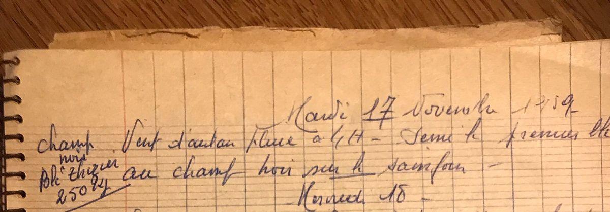 Mardi 17 novembre 1959 - le blé Tézier