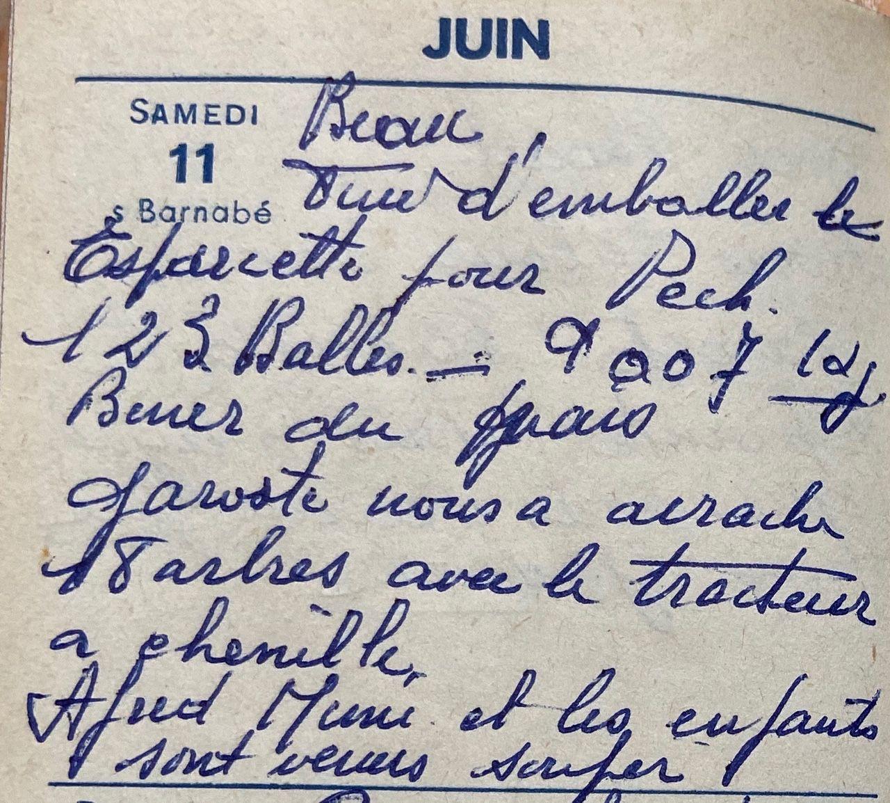 Samedi 11 juin 1960 - les 18 arbres et le tracteur à chenilles
