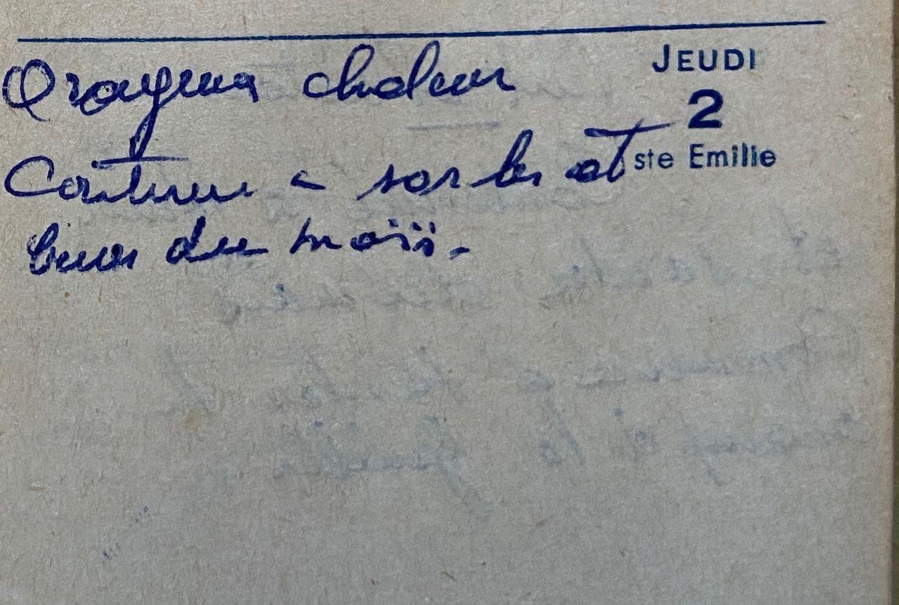 Jeudi 2 juin 1960 - sarcler, biner sous le cagnard