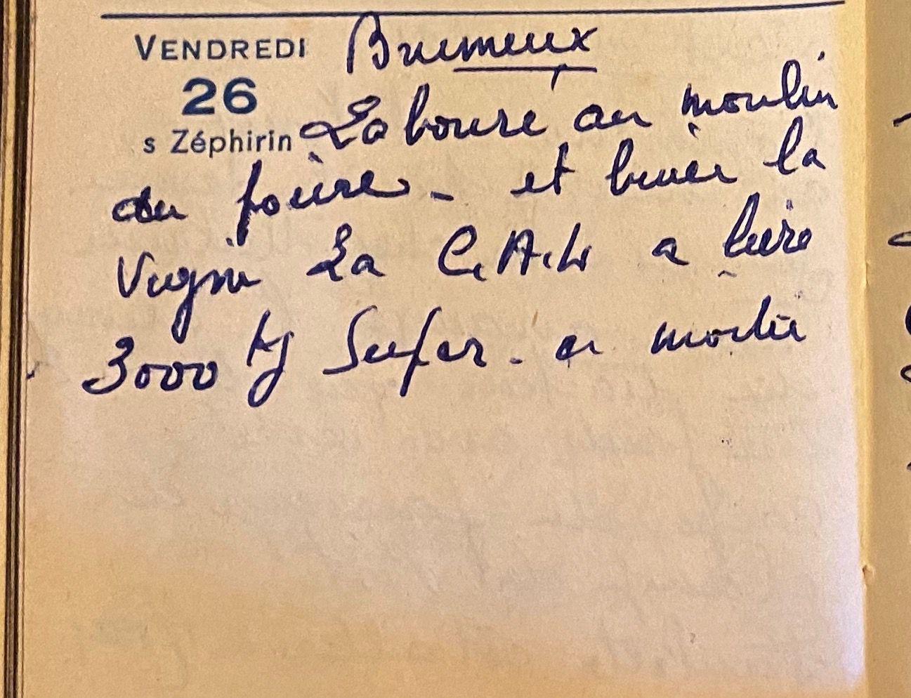Vendredi 26 août 1960 - biner la vigne