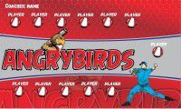 baseball banner with Angrybirds