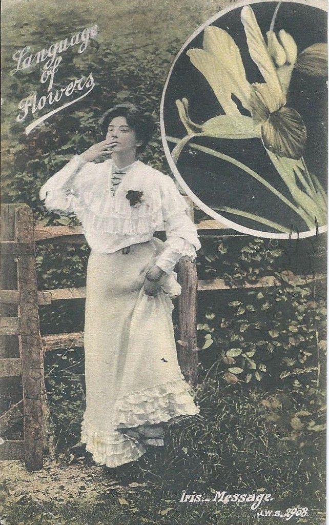 118 - LANGUAGE OF FLOWERS - IRIS MESSAGE - CARTE ANGLAISE
