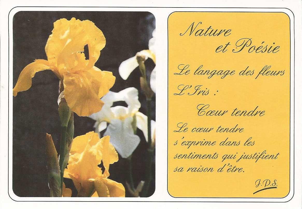 """161 - semblable à la carte 123 ci-dessous - n° 14/100 l'iris - """"c'est avec les fleurs que l'on dit quelques mots, c'est avec le cœur que l'on guérit les maux."""
