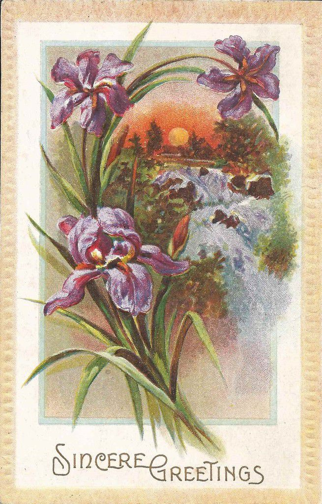 1084 - SINCERE GREETINGS - 18.10.1912