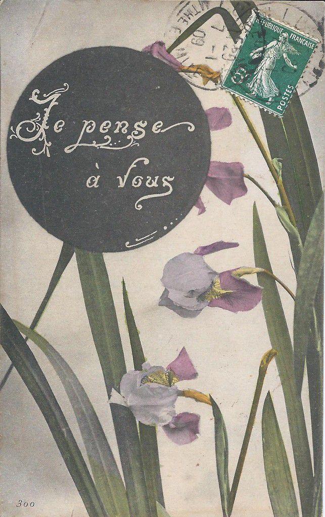 IRIS 1542 - JE PENSE A VOUS ...