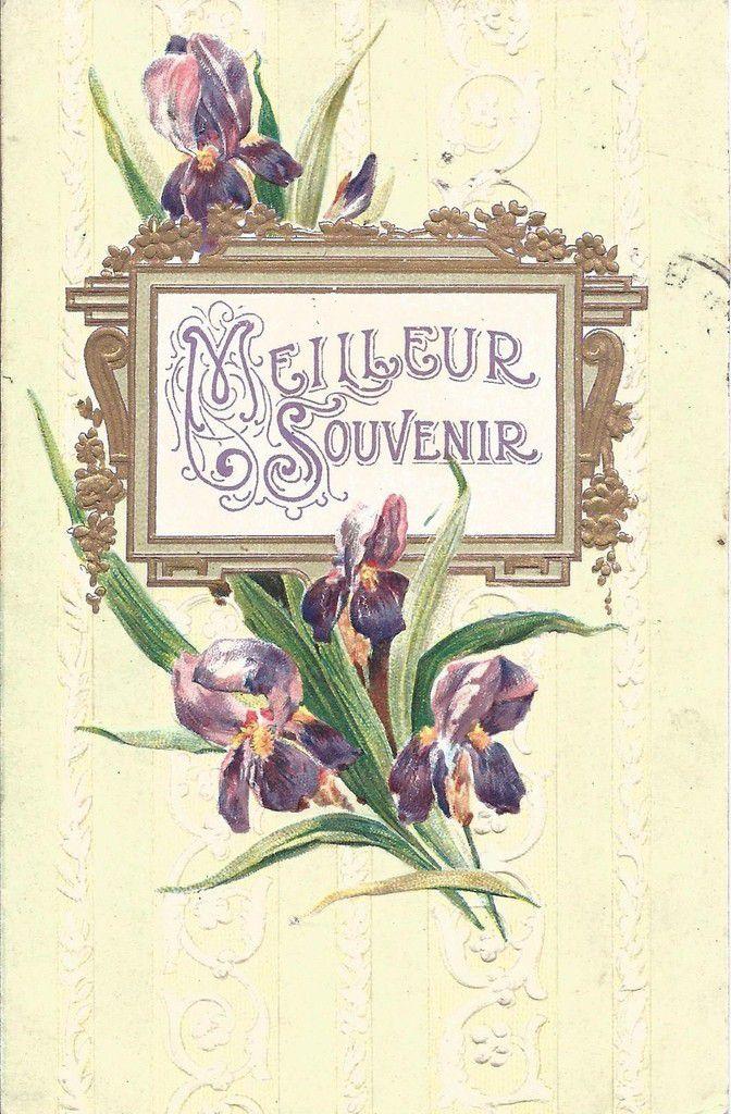iris 1627 - meilleur souvenir (voir carte suivante) écrite en 1908 - K.F. éditeurs Paris