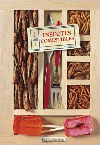 Manger des insectes?