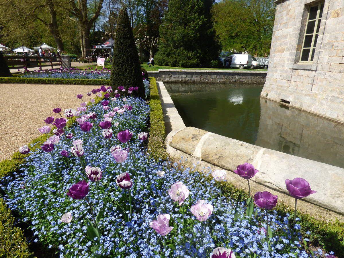 Le château de Maintenon : Les tulipiades 2018