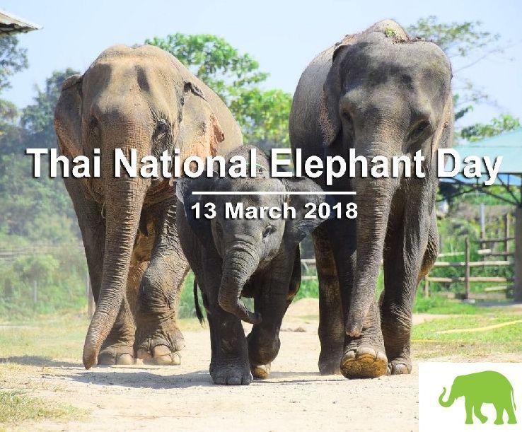 l'éléphant blanc, symbole royal - noy et gilbert en thaïlande
