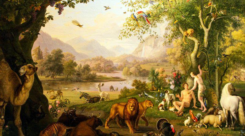 Que dit la Bible à propos des animaux sur la terre et dans les cieux ?
