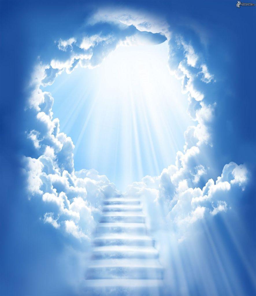 Notre marche spirituelle se fait étape par étape, et chacune d'elle nous rapproche un peu plus du but...