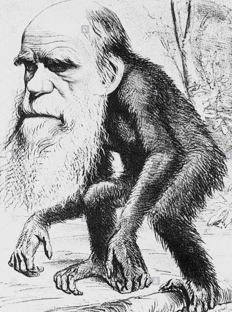Tous les scientiques sont évolutionnistes ? Pas si sûr , le créationnisme aurait tendance à reprendre du terrain dans le milieu...