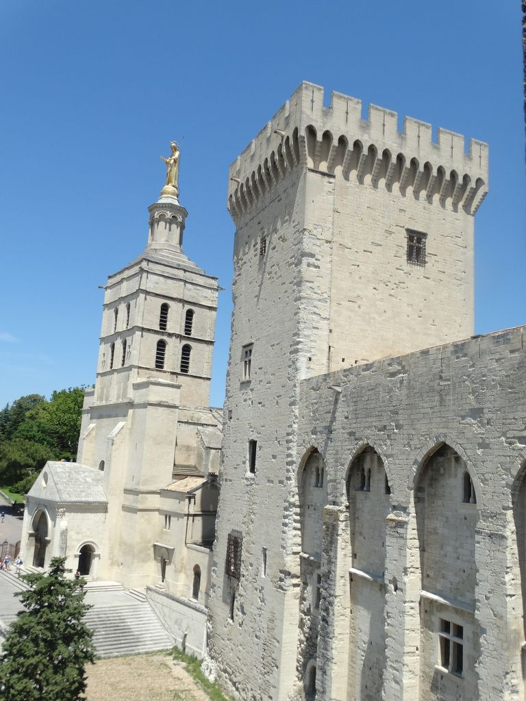 Avignon - Vaucluse