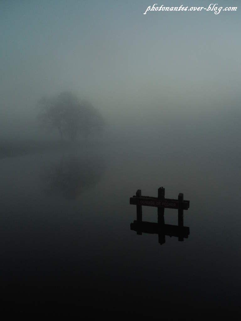 L'etang du Loret dans le brouillard