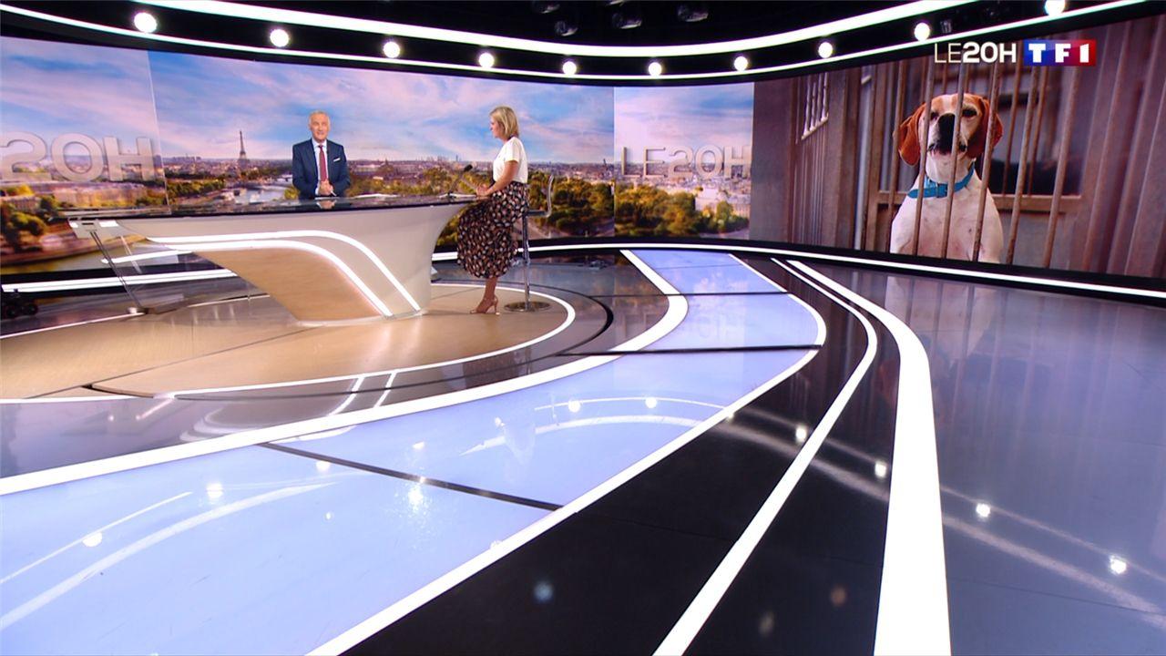 Garance Pardigon Le 20H TF1 le 18.06.2020