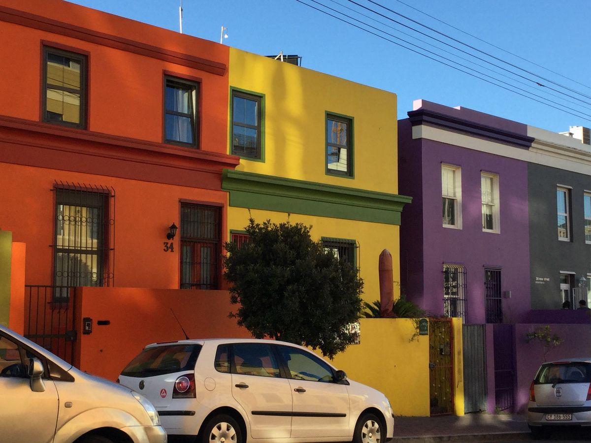 Afrique du sud : animaux, paysages, quartier coloré du Cap. Un enchantement des yeux