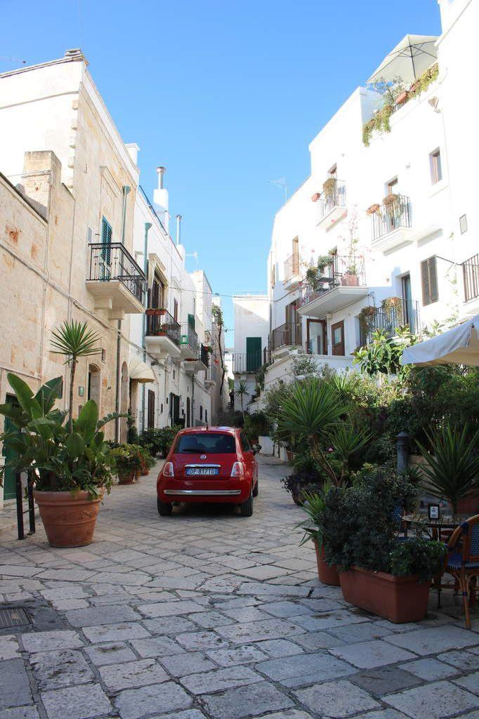 Gallipoli, Polignano, Alberobello et les oliveraies