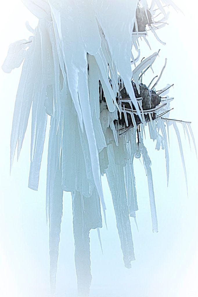 hivernale 4 vallée de Joux et port de Grandson
