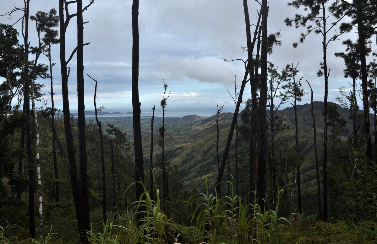 Fiji break: how I patrolled the mountains with the Fiji police