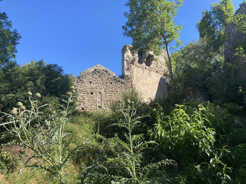 Les ruines de Donzy
