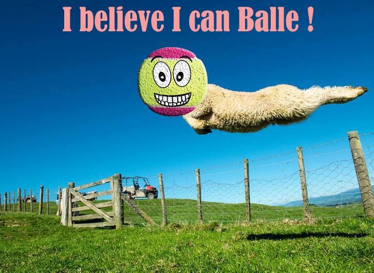 Balle to believe in