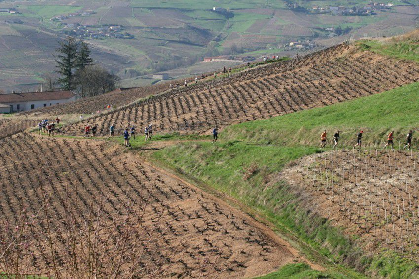 Le Mini Beaujolais Village Trail