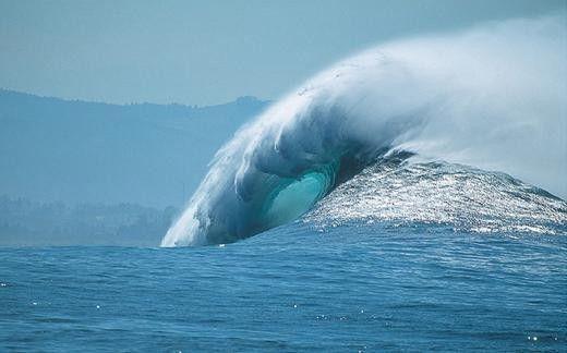 La grosse vague, le petit chef et la feuille d'impôts...