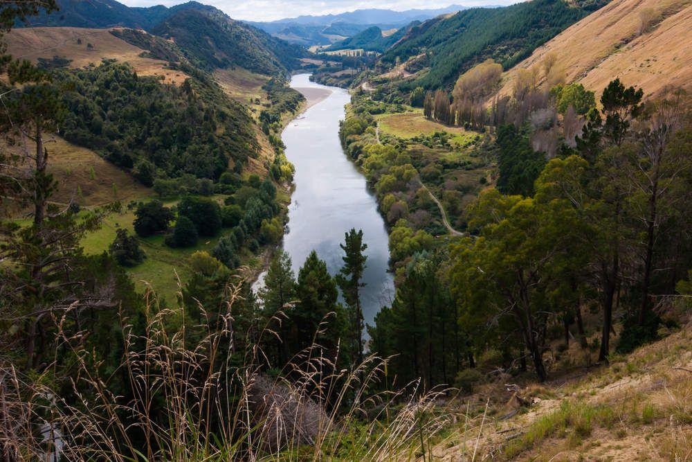 """Le fleuve Whanganui en Nouvelle Zélande. Déclaré """"Entité vivante"""""""