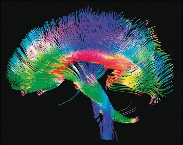 Les neurosciences et les niveaux cachés de Candy Crush...