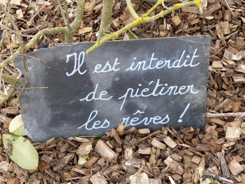 Secrets d'âme...