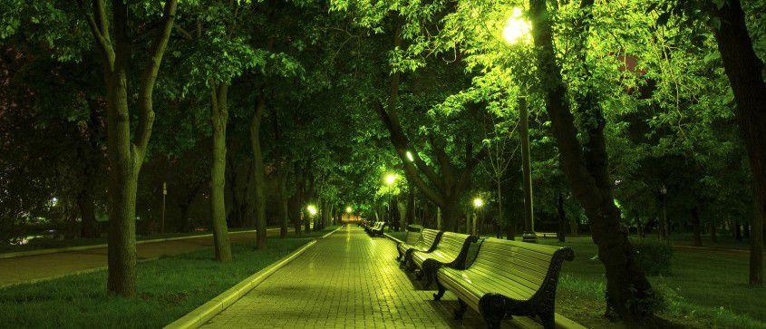 Dans la lumière verte