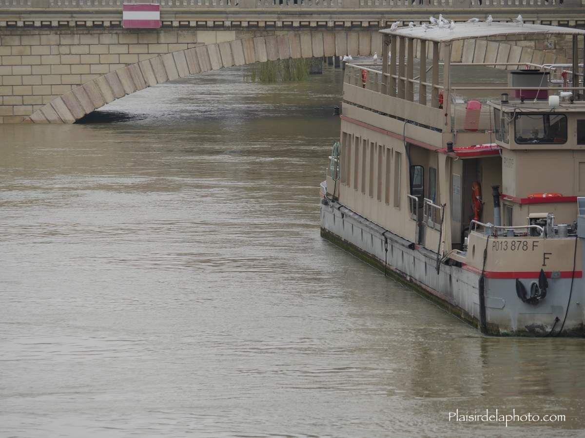 Crue de la Seine Janvier 2018 - Hybride Lumix GX 8 - ISO 250; 150 mm (300 mm en 24x36); f5,1; 1/320 sec. Photo non retouchée, non recadrée, compressée.