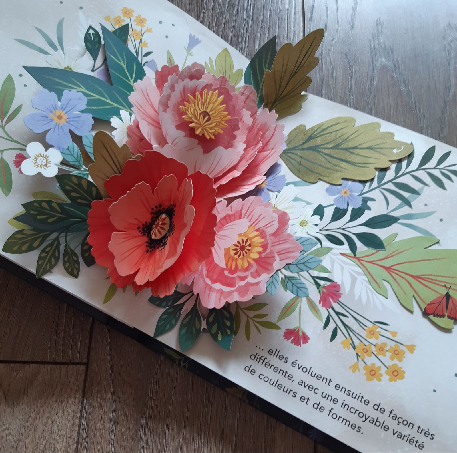 Merveilles de la nature, un pop-up sur les fleurs aux éditions Kimane