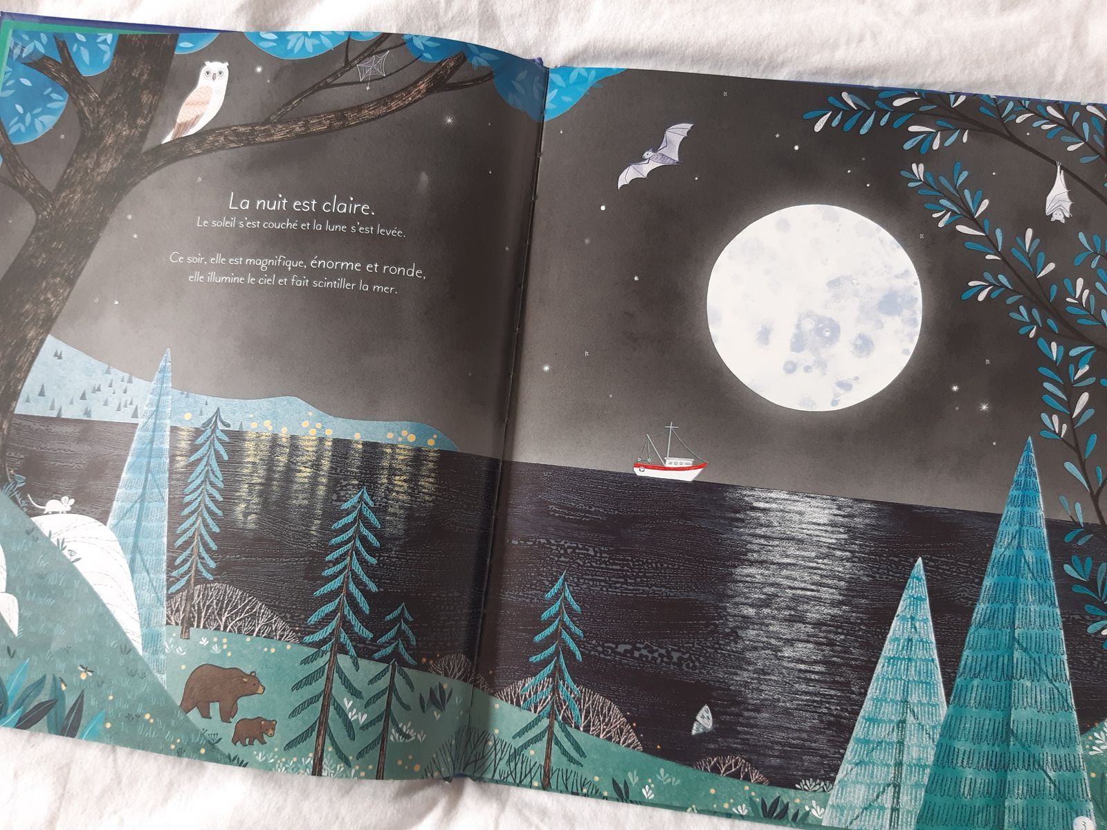 Mon grand livre illustré, la lune
