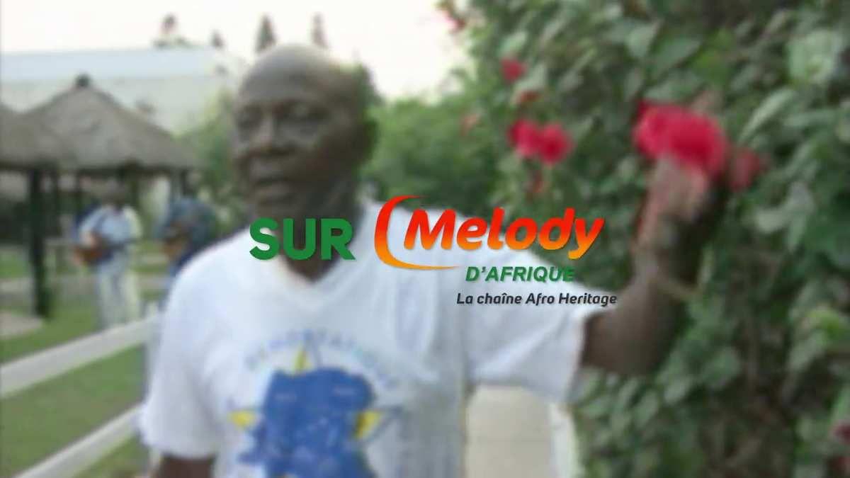 Dès aujourd'hui, Melody d'Afrique, la petite chaine de TV Melody, débarque sur Bouygues