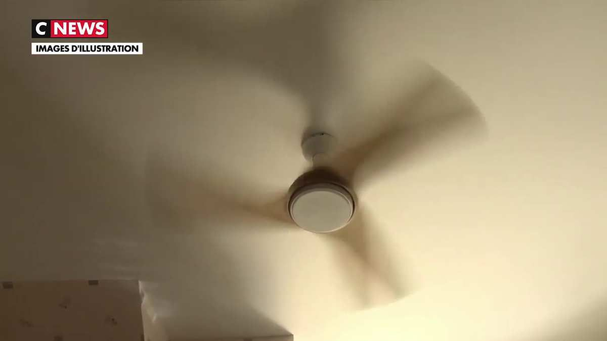Canicule : Les bons réflexes à adopter face à la chaleur