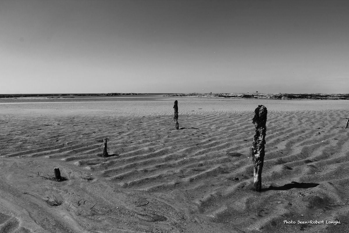 Marée basse, Cotentin