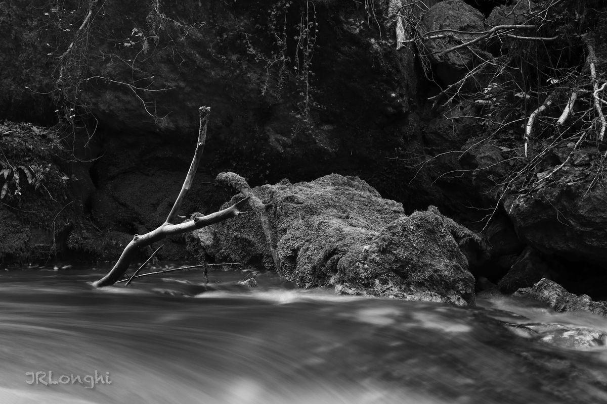 Vous la voyez mieux en N&B ? - Lumière d'Automne sur la Loue - 10 - ©2017 Jean Robert Longhi - Photo non libre de droits