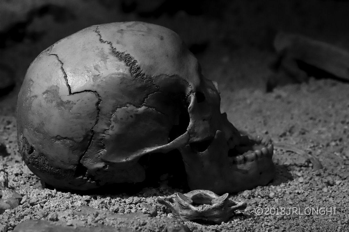 la mort du chasseur... restes humains retrouvés auprès des restes d'un ours des cavernes