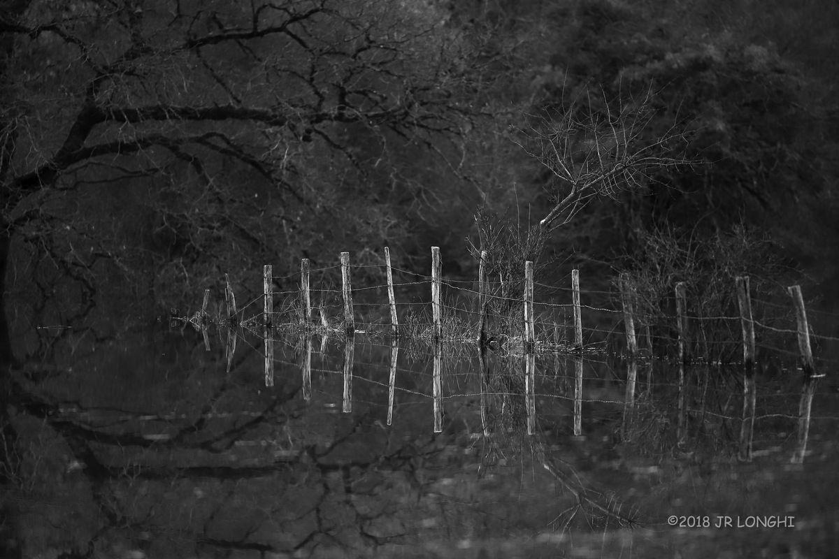 Marais de Saône, série noir et blanc N°7 - Photographie non libre de droits ©2018 Jean-Robert Longhi