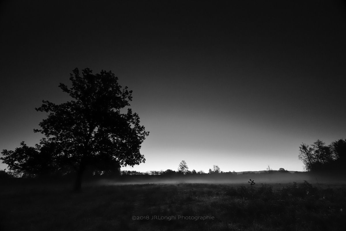 Aurores 1/4 - ©2018 Jean-Robert Longhi Photographie non libre de droits