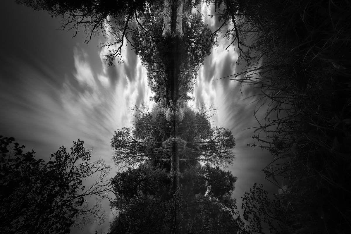 Galerie Pictura 14 ©2019 Jean-Robert Longhi Photographie non libre de droits
